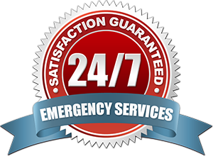 Pro Emergency Plumber Near Me 24 7 Plumbing